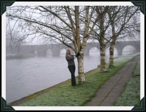 deb bridge
